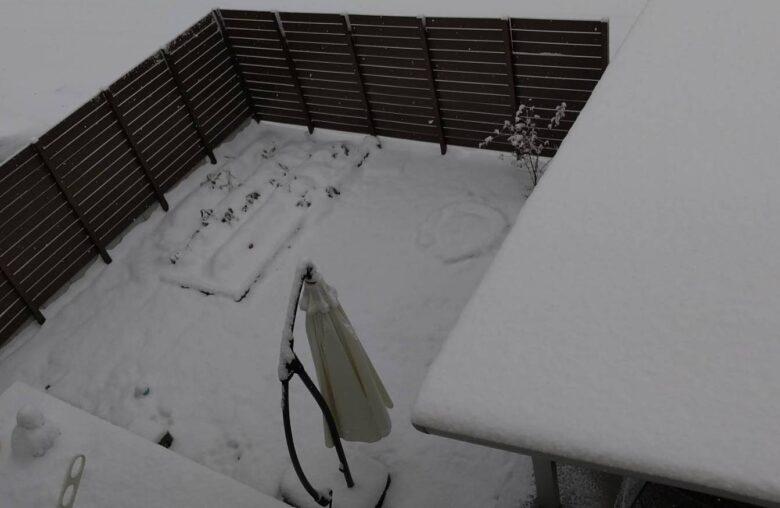 九州に雪が降った写真
