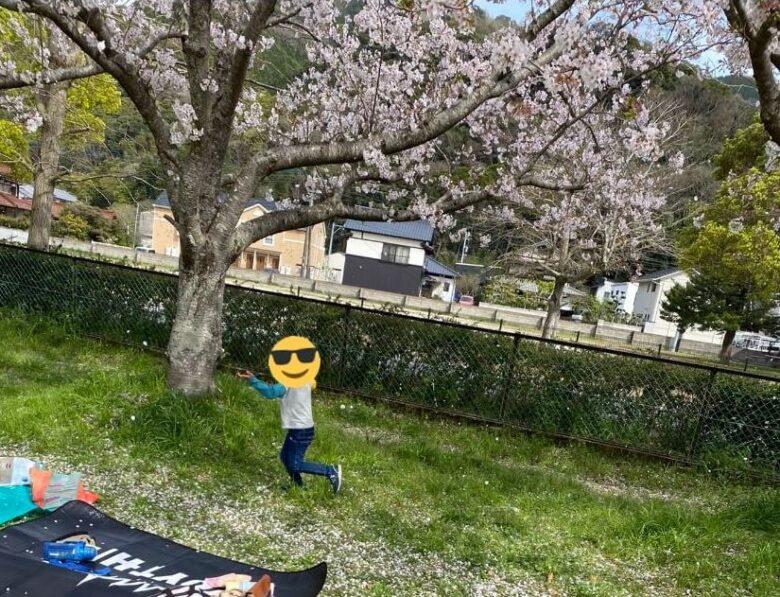 桜キャッチをしている写真1