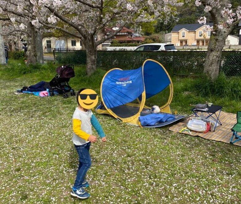 桜キャッチをしている写真3