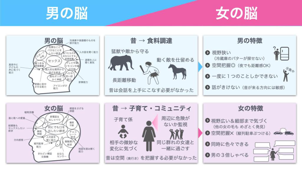 「男の脳と女の脳のちがい」の図解